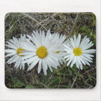 Tapis De Souris Aster lisse des fleurs sauvages F0042 blancs