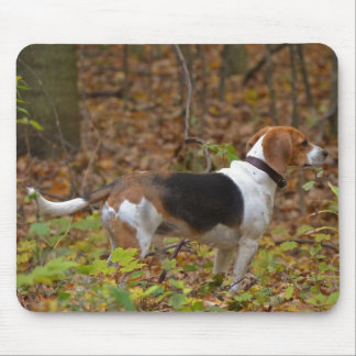 Tapis De Souris Beagle en bois