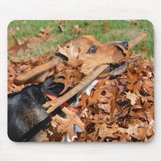 Tapis De Souris Beagle jouant avec le bâton dans le feuille