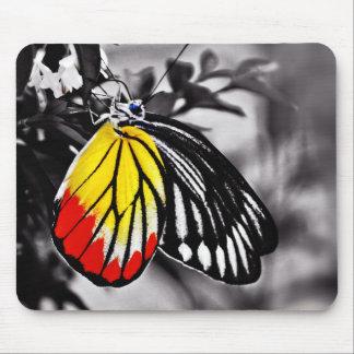 Tapis De Souris Beau papillon