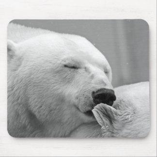 Tapis De Souris Bel ours blanc de repos