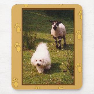 Tapis De Souris Bichon Frise et agneau Mousepad