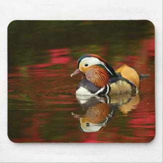 Tapis De Souris Canard de mandarine