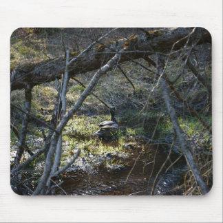 Tapis De Souris Canards dans les bois, Mousepad