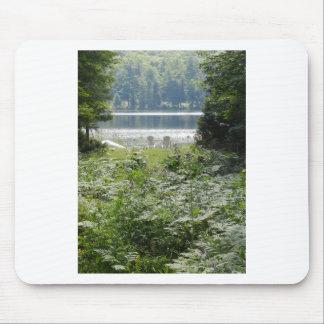Tapis De Souris Chaises par un lac