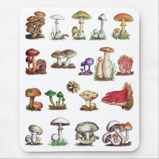 Tapis De Souris champignon