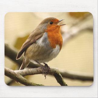 Tapis De Souris Chant Robin