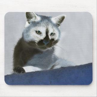 Tapis De Souris Chat bleu de chaussure de neige sur le vagabondage
