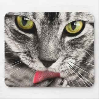Tapis De Souris Chat gris mignon léchant la patte