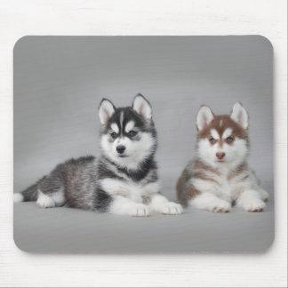 Tapis De Souris Chiots de chien de traîneau sibérien