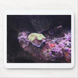 Tapis De Souris Corail mou coloré et roches vivantes