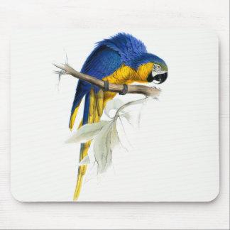 Tapis De Souris Cru bleu et jaune d'ara