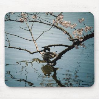 Tapis de souris de canard et de fleurs de cerisier