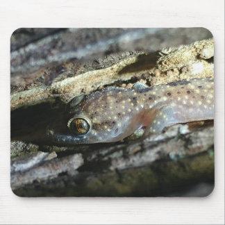 Tapis de souris de Gecko