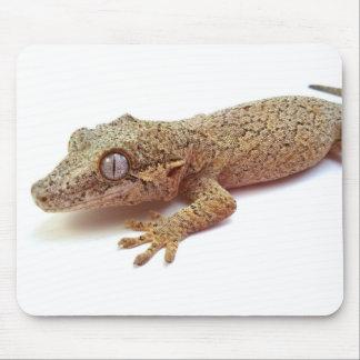 Tapis de souris de Gecko de gargouille