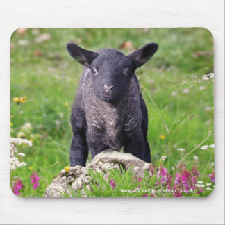 Tapis de souris de moutons noirs de