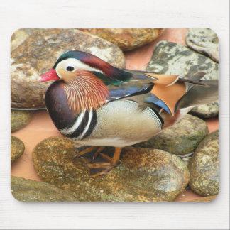 Tapis de souris de photo de canard de mandarine