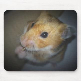 Tapis de souris de tapis de hamster