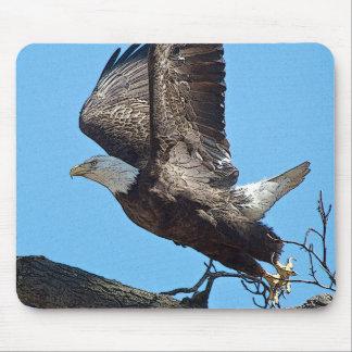 Tapis De Souris Décollage d'Eagle chauve