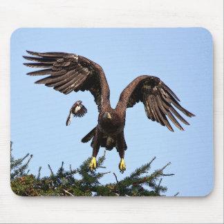 Tapis De Souris Décollage juvénile d'Eagle chauve