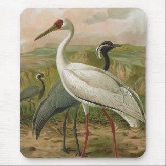 Tapis De Souris Demoiselle et oiseau sibérien de cru de grues