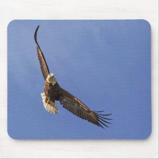 Tapis De Souris Eagle chauve montant
