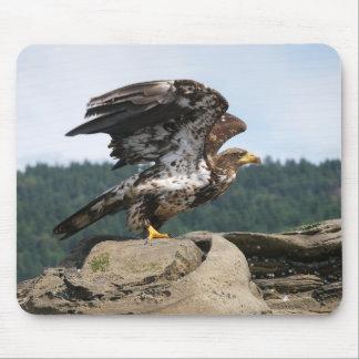 Tapis De Souris Eagle chauve prêt pour le décollage - tapis de