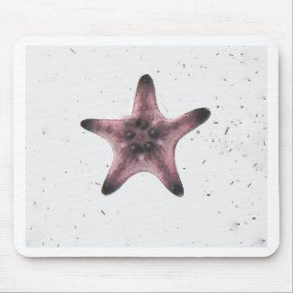 Tapis De Souris Étoiles de mer sur le motif blanc de minimalisme