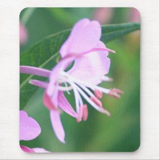 Tapis De Souris Fleur sauvage rose Mousepad
