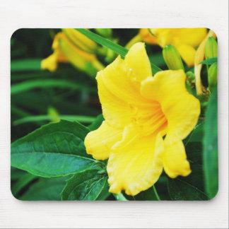 Tapis De Souris Fleurs jaunes du Michigan
