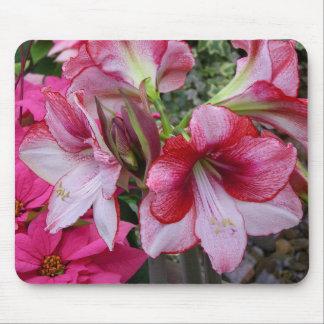 Tapis De Souris Fleurs rouges de vacances d'amaryllis et de