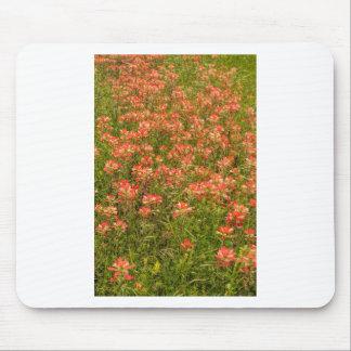 Tapis De Souris Fleurs sauvages de pinceau indien du Texas
