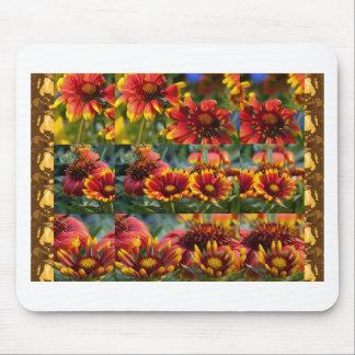 Tapis De Souris Floralies : Différentes étapes de fleur sauvage