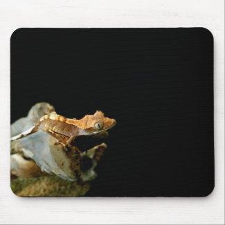 Tapis De Souris Gecko crêté Mousepad