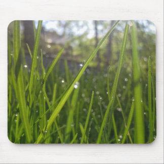 Tapis De Souris Gouttes de pluie sur l'herbe verte