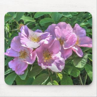 Tapis De Souris Groupe rose sauvage