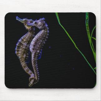 Tapis De Souris Hippocampe Mousepad