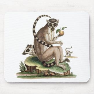 Tapis De Souris Illustration de lémur