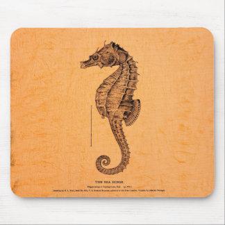 Tapis De Souris Illustration vintage d'hippocampe