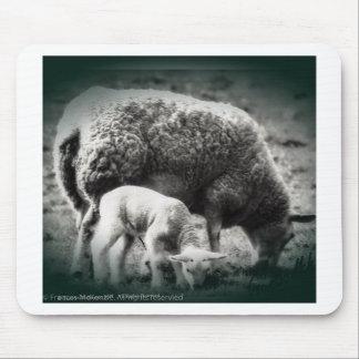 Tapis De Souris Image mono de moutons et d'agneau