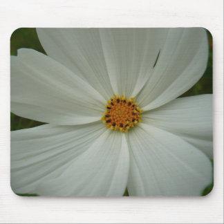Tapis De Souris Joli fleur sauvage de fleur blanche de cosmos