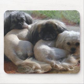 Tapis De Souris Jolis chiots mignons de chiens se couchant sur le