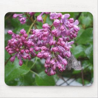 Tapis De Souris Jolis lilas environ à la fleur avec la mite