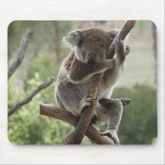 Tapis De Souris Koala somnolent Mousepad