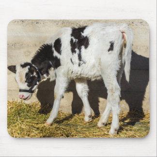 Tapis De Souris La vache à bébé mange le déjeuner au soleil