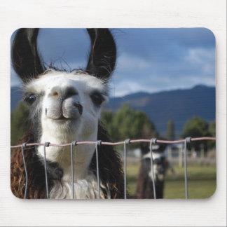 Tapis De Souris Lama de sourire drôle en Orégon du sud