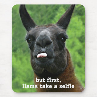 Tapis De Souris Le lama prennent un selfie