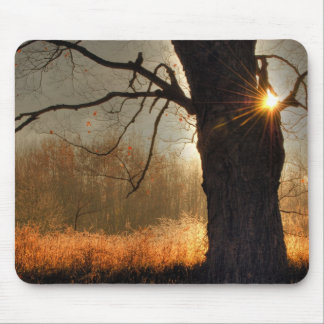 Tapis De Souris Lever de soleil d'automne