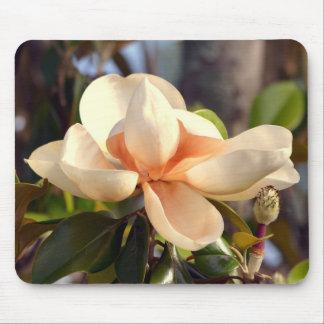Tapis De Souris Magnolia du sud de la Louisiane