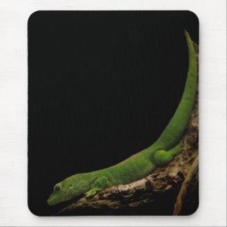 Tapis De Souris Mousepad de Gecko de jour du Madagascar